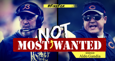 Most NOT Wanted: John Fox & Dowell Loggains